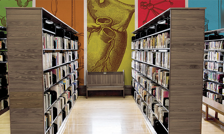 library-wallcovering