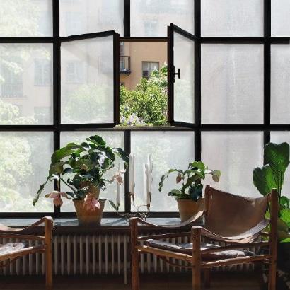 Squid-Transparent-Textile-Home-2